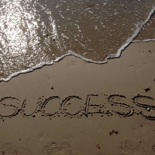 Veritas Business Sales Ltd guarantees success